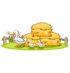 Isolated picture ducks and hay vector