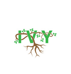 ivy woven through ivy letter vector image