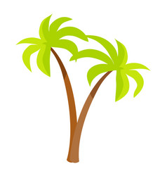palm trees with green leaves and trunk palm icons vector image