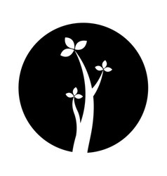 Tree plant branches icon vector