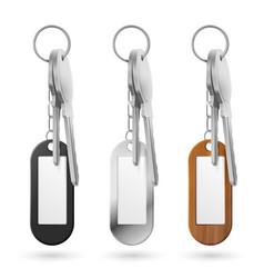 Trinkets keys bunch metal wooden and plastic vector