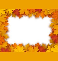 frame of fallen maple leaves vector image