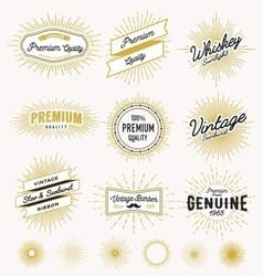 Set of vintage sunburst frame and label design vector image vector image