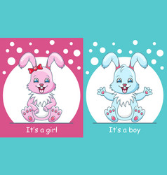baby shower greeting card with rabbits boy and vector image