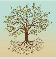 Autumn tree of life vector