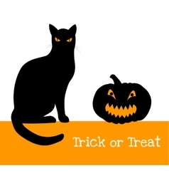 Pumpkin and black cat vector