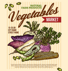 Vegetable market poster with veggies vector