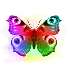 Butterfly Inachis Io Iridescen colours vector image vector image