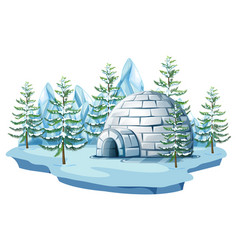 igloo at the arctic land vector image vector image