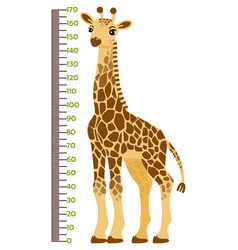 kids height chart with vector image