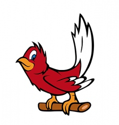 red robin vector image