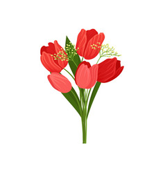 bouquet of fresh tulips with red petals and green vector image