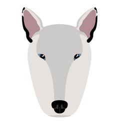 bull terrier avatar vector image