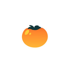 persimmon exotic tropical fruit flat icon vector image