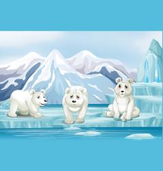 Scene with three polar bears on ice vector