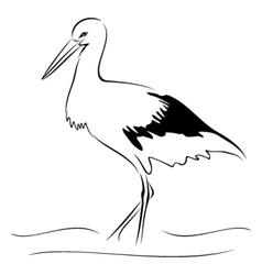 Stork on sketch vector