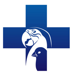 bird veterinary icon vector image