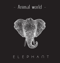 animal world elephant hand draw sketch head of ele vector image