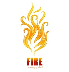 burning flame fire vector image