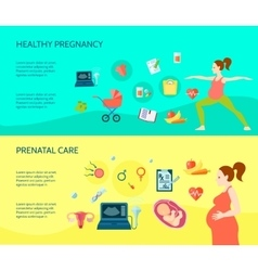 Pregnancy Compositions Set vector