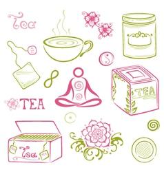 tea asian cherry blossom vector image
