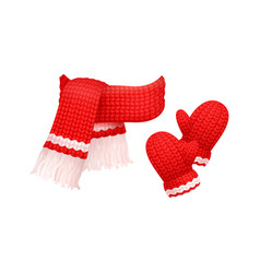 woolen mittens and knitted scarf with white thread vector image