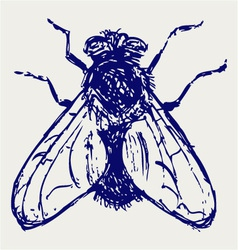 Black flies vector image vector image