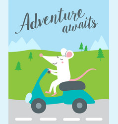 adventure awaits card with cute rat vector image