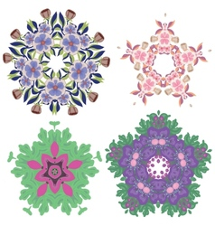 Bright beautiful floral decorations in different vector