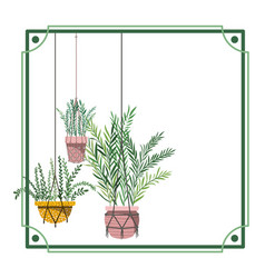 Frame with houseplants on macrame hangers vector