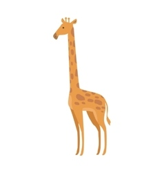 Giraffe Giraffa Camelopardalis Cartoon Animal vector image