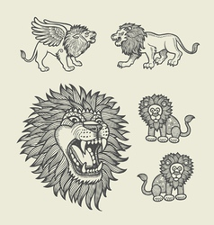 Lion Decoration Sketches vector image