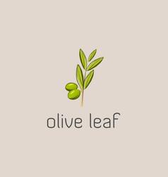 olive leaf logo vector image