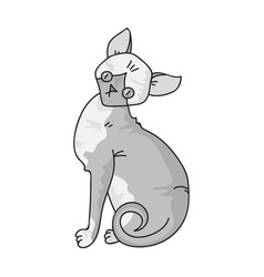 Sphynx icon in monochrome style isolated on white vector