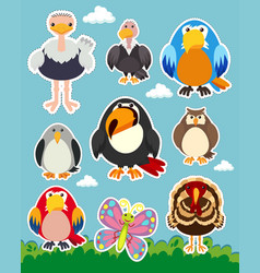 Sticker set with different types of birds vector