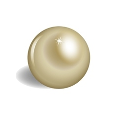 Big brilliant pearl on white background vector image