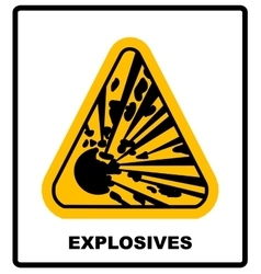symbol of the explosion in the triangle vector image vector image