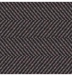 wool herringbone fabric vector image vector image