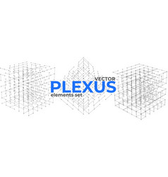 Abstract plexus design elements set vector