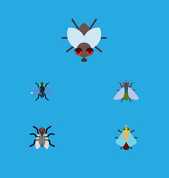 Flat icon buzz set of tiny buzz gnat and other vector
