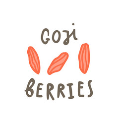 goji berries superfood vector image