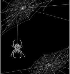 Helloween background with spider vector