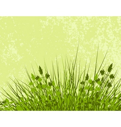 meadowy vector image