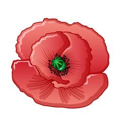 Opium flower icon cartoon style vector
