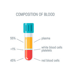 Composition of blood concept flat concept vector