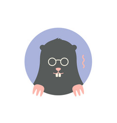 Icon of black mole vector