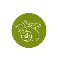 Icon Papaya in the Contours vector