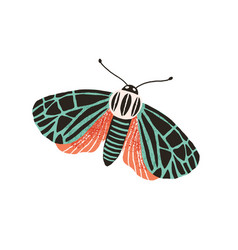 Single butterfly with colored wings and antennae vector