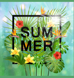 summer composition with leaves and flowers of vector image