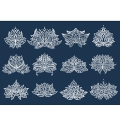 White paisley flowers with lace ornament vector image vector image